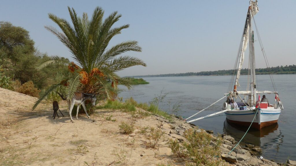 Felucca at the jetty.